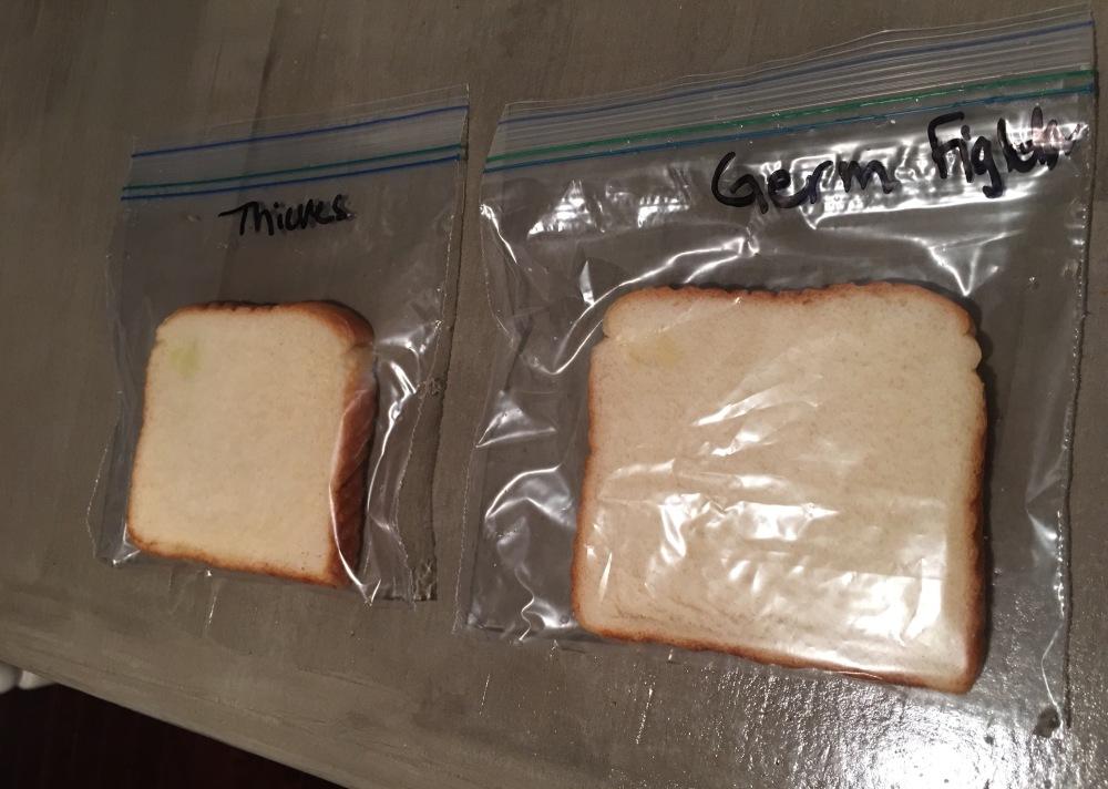 Moldy bread test essential oil